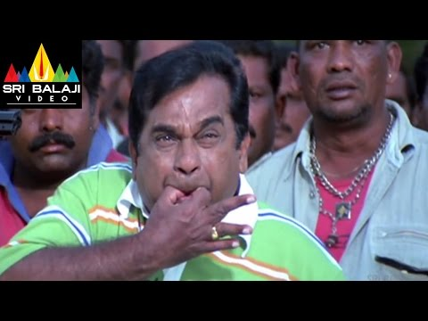 Krishna Movie Raviteja and Jakka Scene   Ravi Teja, Trisha   Sri Balaji Video