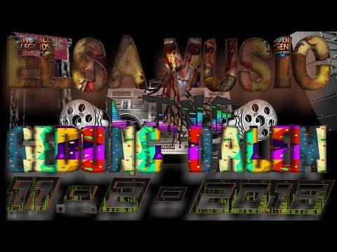 ELSA MUSIC LIVE GEDUNG DALAM (3)