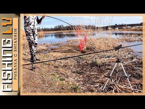 ловля воблы весной на фидер
