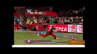 Best Catch Video In IPL T20 By Shane Watson For RCB
