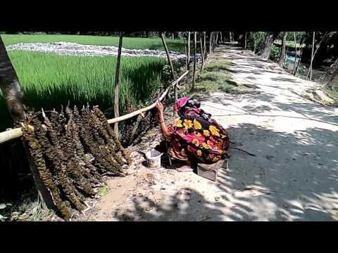 Bangladesh vilegg scene