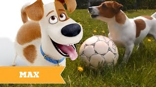 The Secret Life Of Pets REAL LIFE All Characters