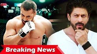 Salman करेंगे Sultan 2 से धमाका, Shahrukh ने फिर दोहराई गलती... अब बचना मुश्किल