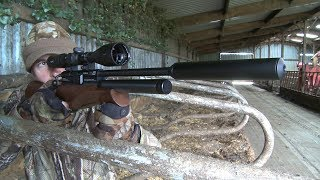 The Airgun Show – hunting farmyard doves and feral pigeons, PLUS the Cometa Goldeneye Kit on test…