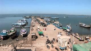 Beyt Dwarka, Gujarat