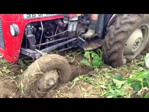 Need two tractors Tafe 42 DI & Rakovica 65 to draw a Tafe 35 DI out of the mud