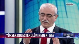 1 Gün - 20 Haziran 2017 (Prof. Dr. Bingür Sönmez)