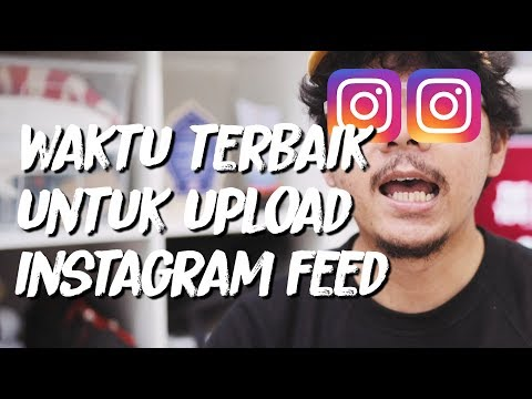 Kapan Sih Waktu Terbaik Upload Instagram Feed - The More You Know (TMYK)