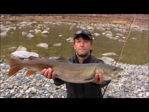 рыбалка на алтае сколько стоит