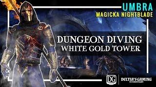 Dungeon Diving - Umbra Magic Nightblade - Veteran White Gold Tower