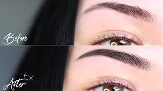 Fuller Looking Brows WITHOUT Makeup | Dying + Tinting My Eyebrows