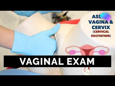 Vaginal Examination (PV) - OSCE Guide