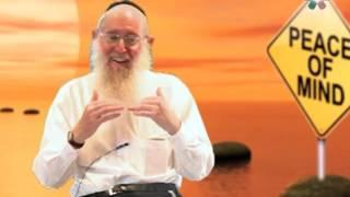The Art Of Serenity: Peace Of Mind - Rabbi Zelig Pliskin