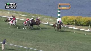 RACE REPLAY: 2017 Honey Fox Stakes Featuring Celestine
