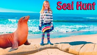 ASSISTANT Animal Hunt Surprise Seal Beach Hunt Video