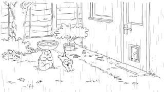 Мультик про кису - Simon`s Cat