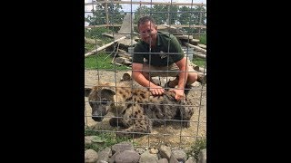 Animal Adventures with Jordan: Spotted Hyena
