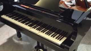 Edelweiss G66 Self-Playing Piano (Michael Bublé)