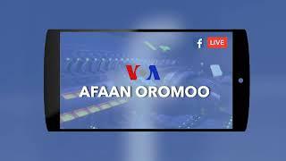 VOA AFAAN OROMO JULY 20/2018