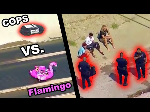 GIANT FLAMINGO VS. L.A.P.D. Police Chase Inflatable Flamingo Raft Down L.A. River JOOGSQUAD PPJT