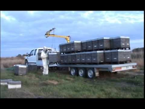 AJ 2006 full load Beehive crane Grue ruches Kran bienenstock Grua colmenas