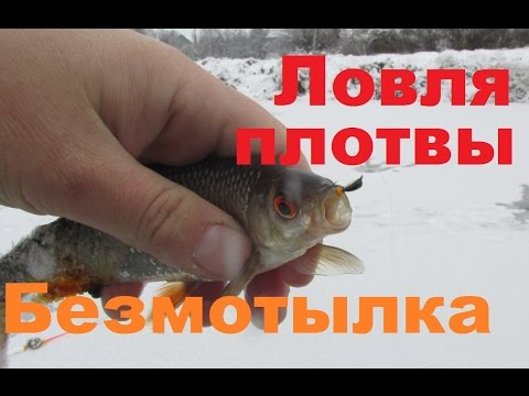 видео урок ловля плотвы
