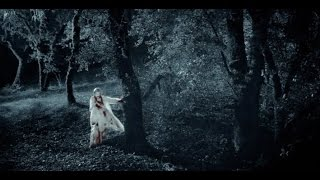 twixt (2011) with Bruce Dern, Elle Fanning,Val Kilmer movie