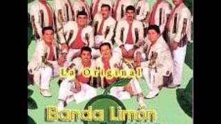 la original banda el limon el gato negro.wmv