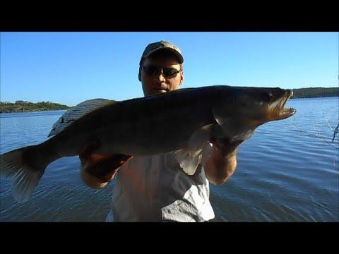 ютуб видеохостинг рыбалка на резинку видео
