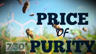 Fake honey: Study finds disturbing results