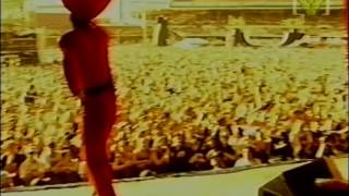 TISM - Greg! The Stop Sign | Big Day Out 1996