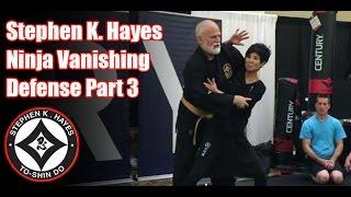 Grand Master Stephen K. Hayes: Ninja Vanishing Defense Part 3
