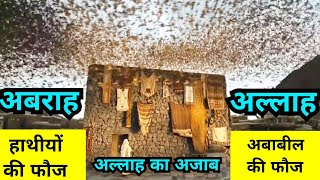 Ababeel birds Save Kaba    Surah Feel Explanation in Hindi Urdu