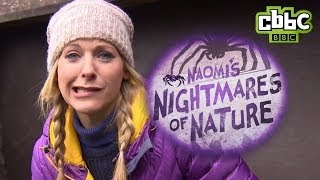 CBBC: Naomi's Nightmares of Nature - Alaska