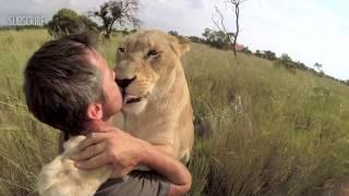LION HUGGING | The Lion Whisperer