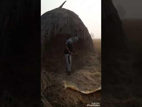Xxx Mp4 खेत मे लडकी की चुदाई 3gp Sex
