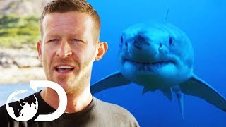 Enraged Shark Attacks Group Of Deep Sea Divers | Isle Of Jaws: Blood Brother