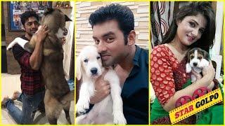 ৮ টলিউডের স্টারদের পোষা প্রানিদের প্রেম | 8 Bengali Stars Love For Their Pets Have Won Our Hearts