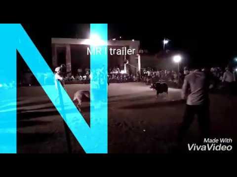 Xxx Mp4 Mr I Trailer Sheep Fight 3gp Sex