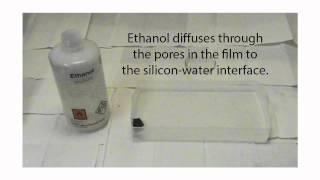 Drunken Porous Silicon - Pharmaceutical Physics Group Presentation Video