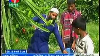 Alfazul Alam dragon report on Bangla vision