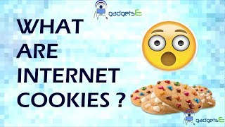 What are Internet Cookies ? Types of Browser Cookies and How Do They Work ? Explained In Hindi