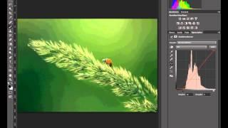 Photoshop cs6 exakter manueller weißabgleich mit Graduaduationskurven