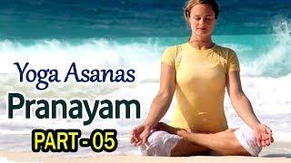 Pranayama Yoga For Beginners | Pranayama Yoga Exercise | Pranayama Techniques in Telugu | Part 3