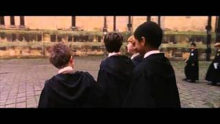 HARRY POTTER RonHermione Moment 5 Sorcerer's Stone
