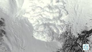 Large avalanche experiment of SLF in Valais (Switzerland), January 2016