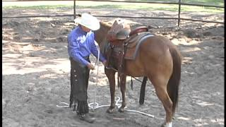 Saddle a horse for the first time.