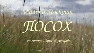 Vladimir Stockman   ПОСОХ