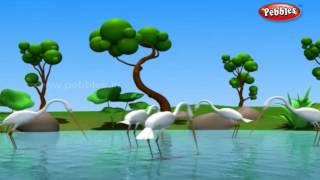 Foolish Crane | জঙ্গলের গল্প | 3D Moral Stories For Kids in Bengali | Jungle Stories in Bengali