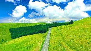 Drone Japan 4k Summer aerial drive 絶景  ドローン 空撮映像 初夏のビーナスライン 霧ヶ峰高原 空中ドライブ Venus line Kirigamine